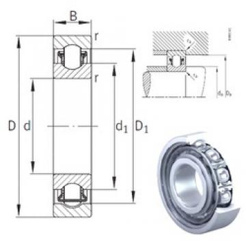 55 mm x 100 mm x 21 mm  INA BXRE211 needle roller bearings